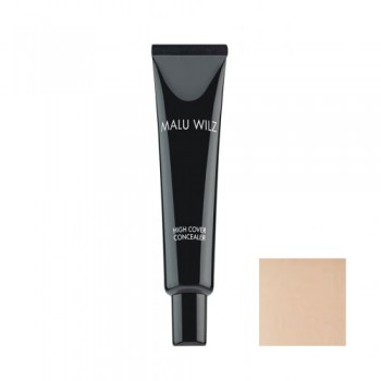 High Cover Concealer 2